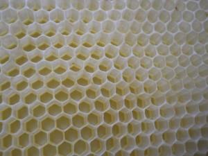 comb_closeup